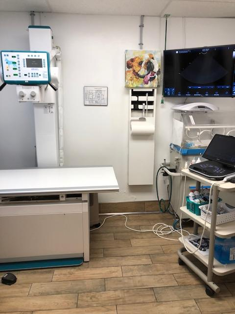 Radiology Suite 1